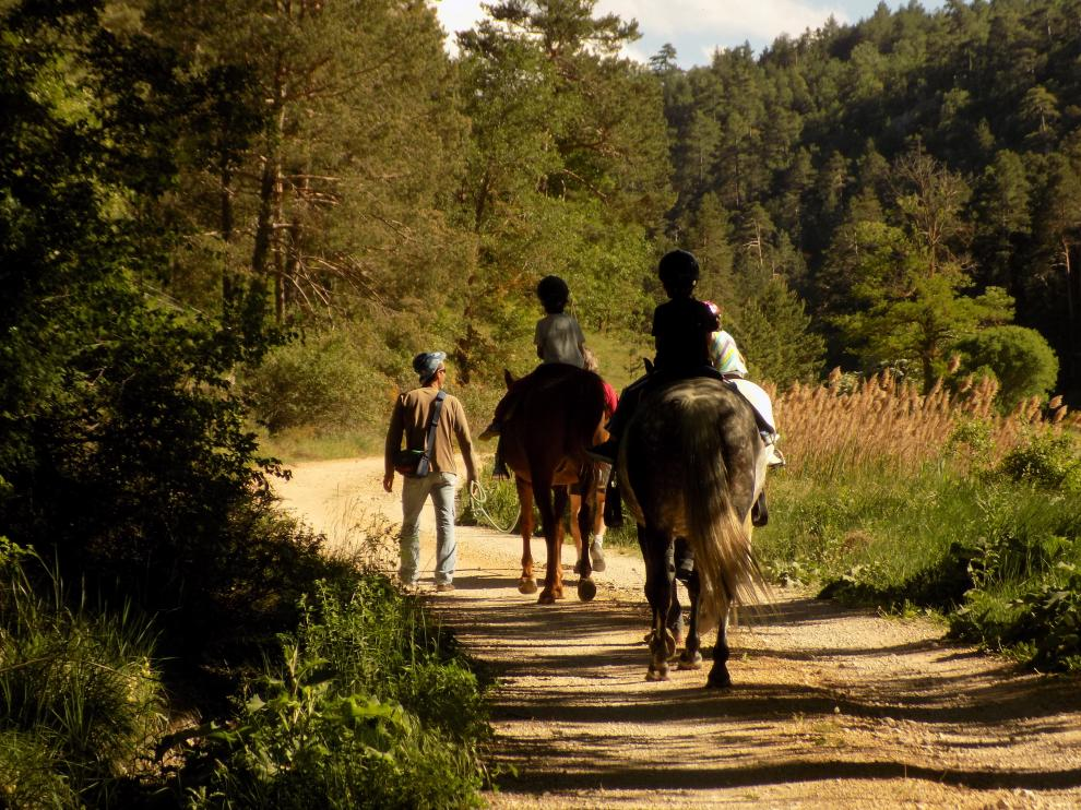 Niños en un paseo a caballo.