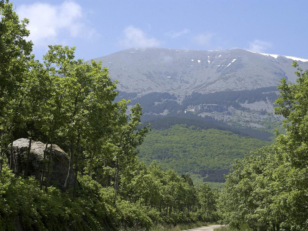 Desde Lituénigo, camino del corazón del Parque Natural del Moncayo.