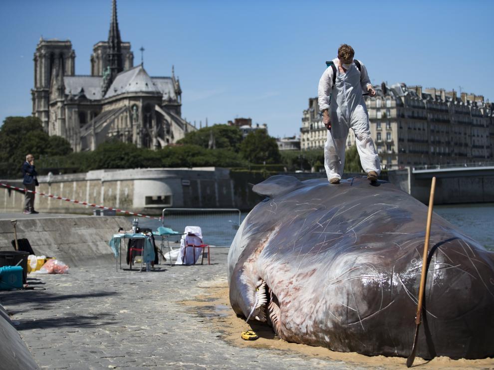 El grupo 'Captain Broomer', colocando la ballena en París