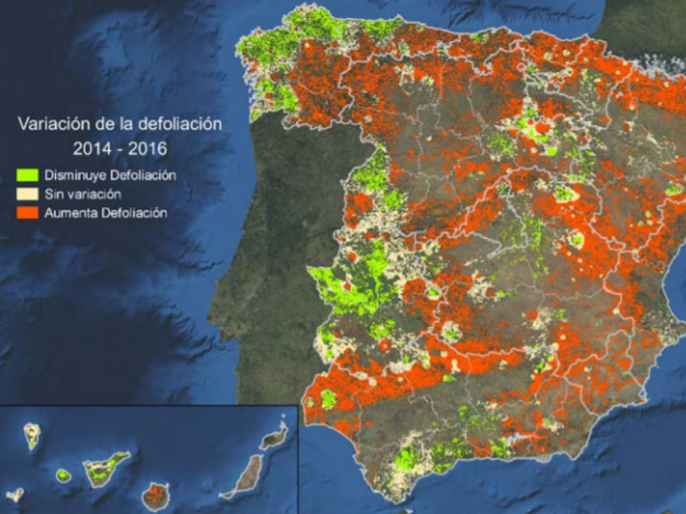 Mapa incluido en el último Inventario de Daños Forestales.