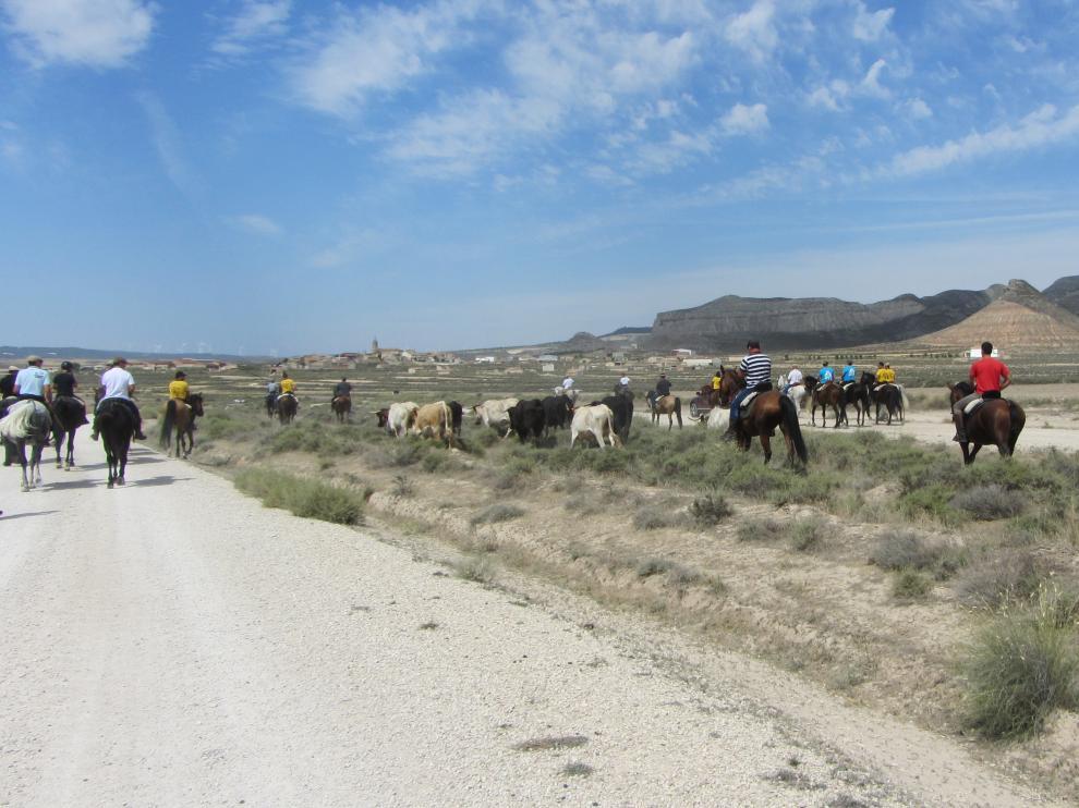 ?II feria de Caza y Tradiciones en el mundo rural de Puebla de Albortón