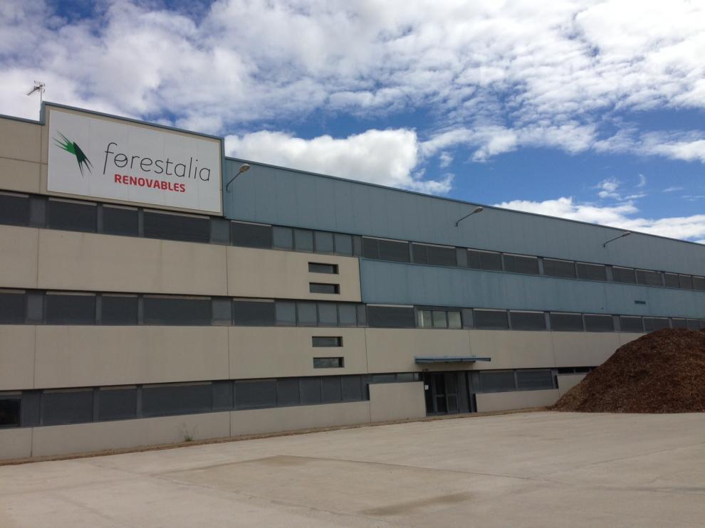 Primera inversión. Forestalia ha levantado sus primeras instalaciones en Erla, donde prevé un centro logístico de biomasa y una fábrica de pellet de derivados de la madera. Además, tiene en estudio una planta eléctrica.