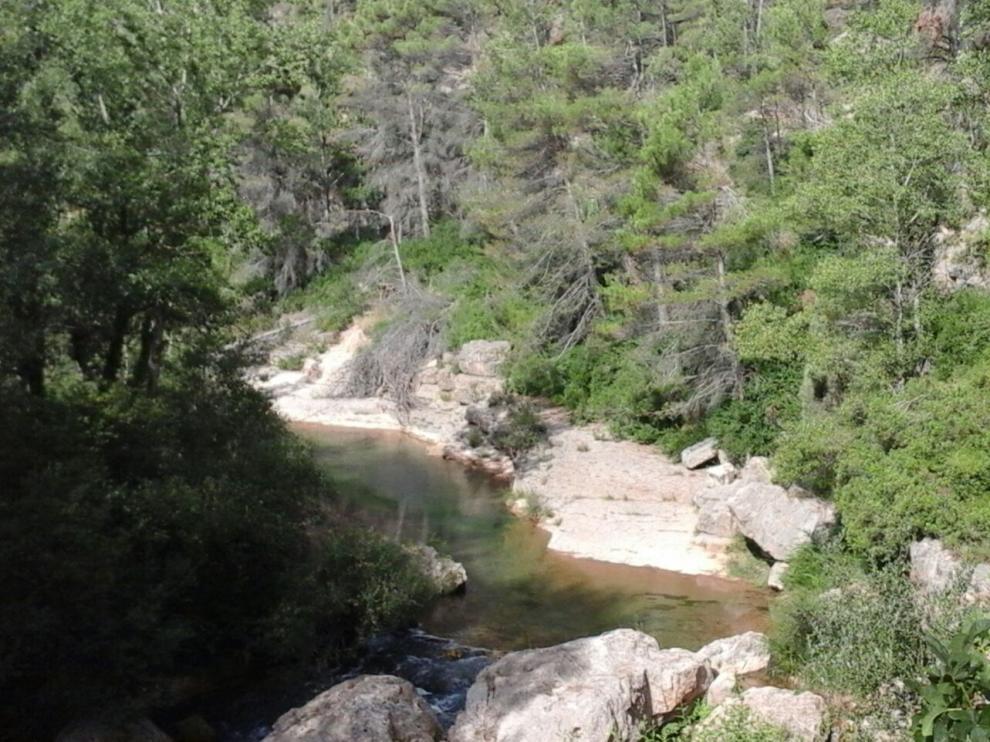 Poza junto al puente de El Cantal, muy frecuentada por bañistas, con numerosas ramas caídas.