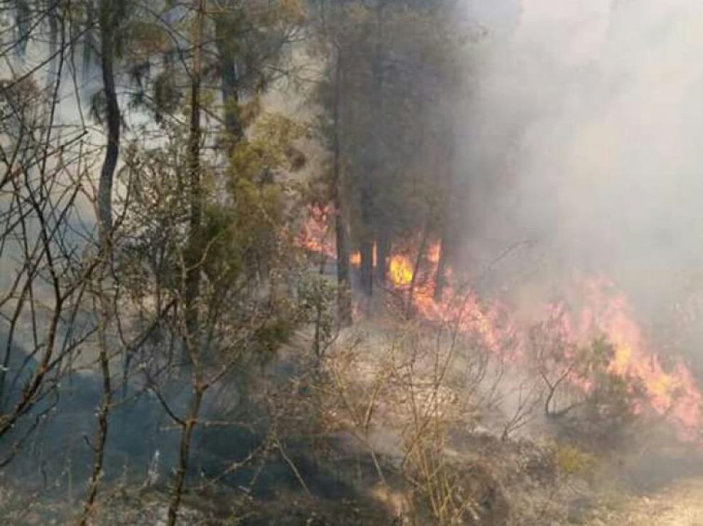 El incendio de Yeste ha quemado 100 hectáreas.