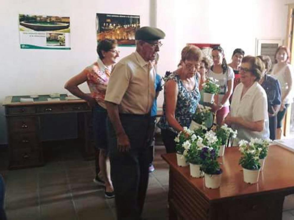 Los vecinos de Cedrillas recogen las flores repartidas por el Ayuntamiento de la localidad.