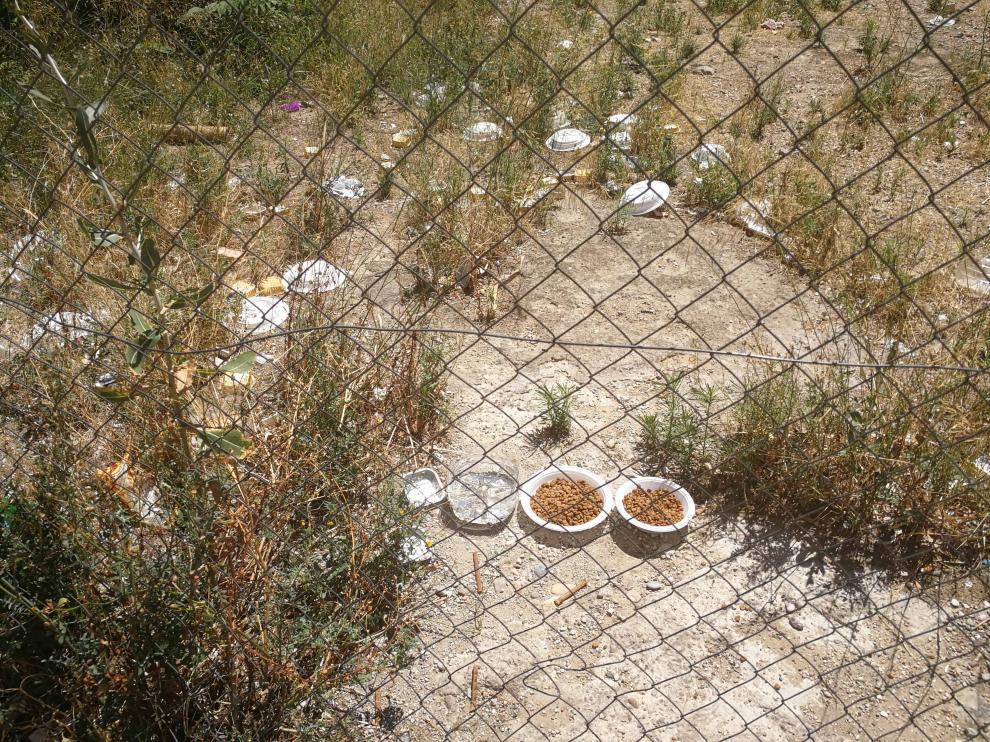 """Varios solares de Torrero, """"un foco de suciedad y contaminación ambiental"""""""