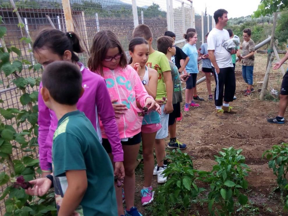 Imagen de la granja escuela El Casón de Tobed