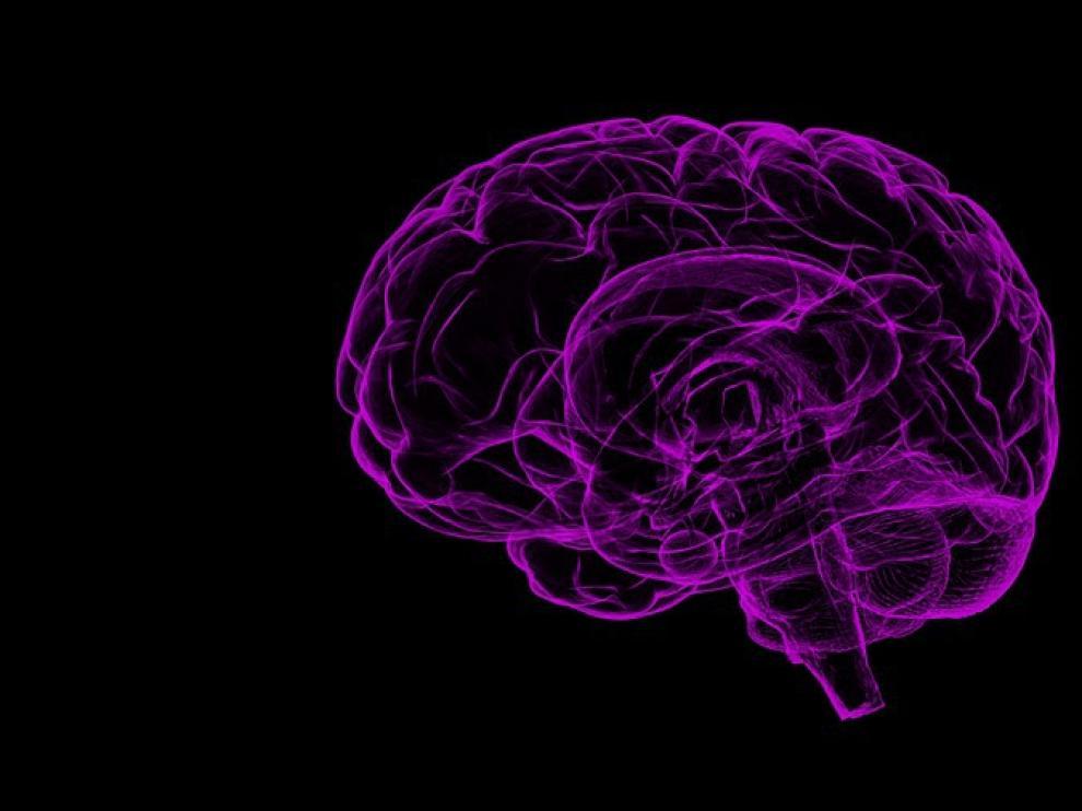 Las investigaciones actuales sobre la esquizofrenia se centran en tres células cerebrales.