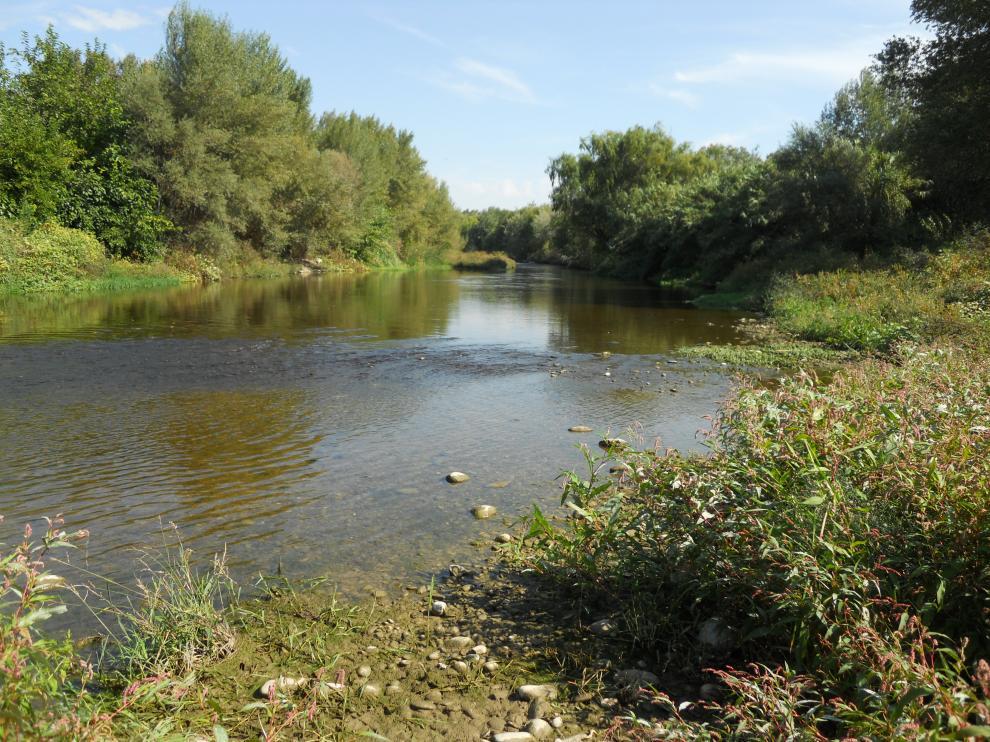 El río Gállego acercándose ya a su desembocadura en el Ebro