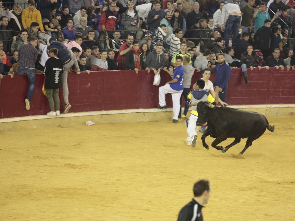 Quinto día de vaquillas en las fiestas del Pilar de Zaragoza