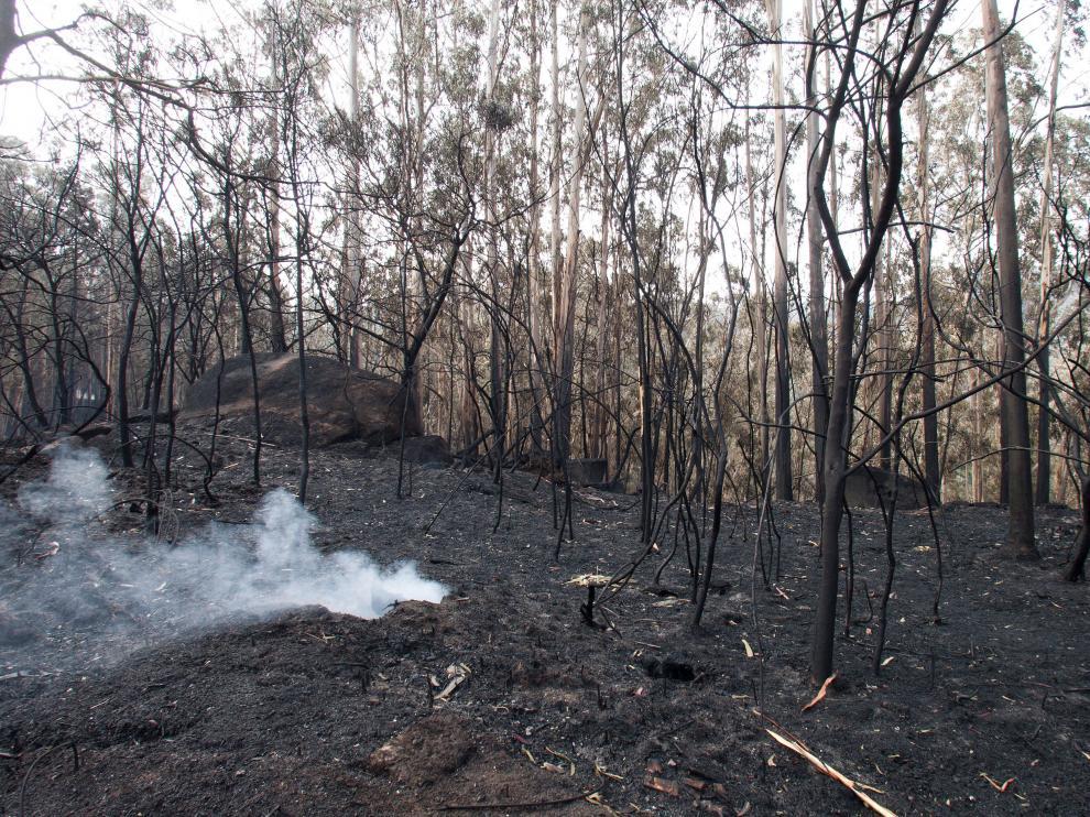 35.500 hectáreas se han quemado en Galicia.