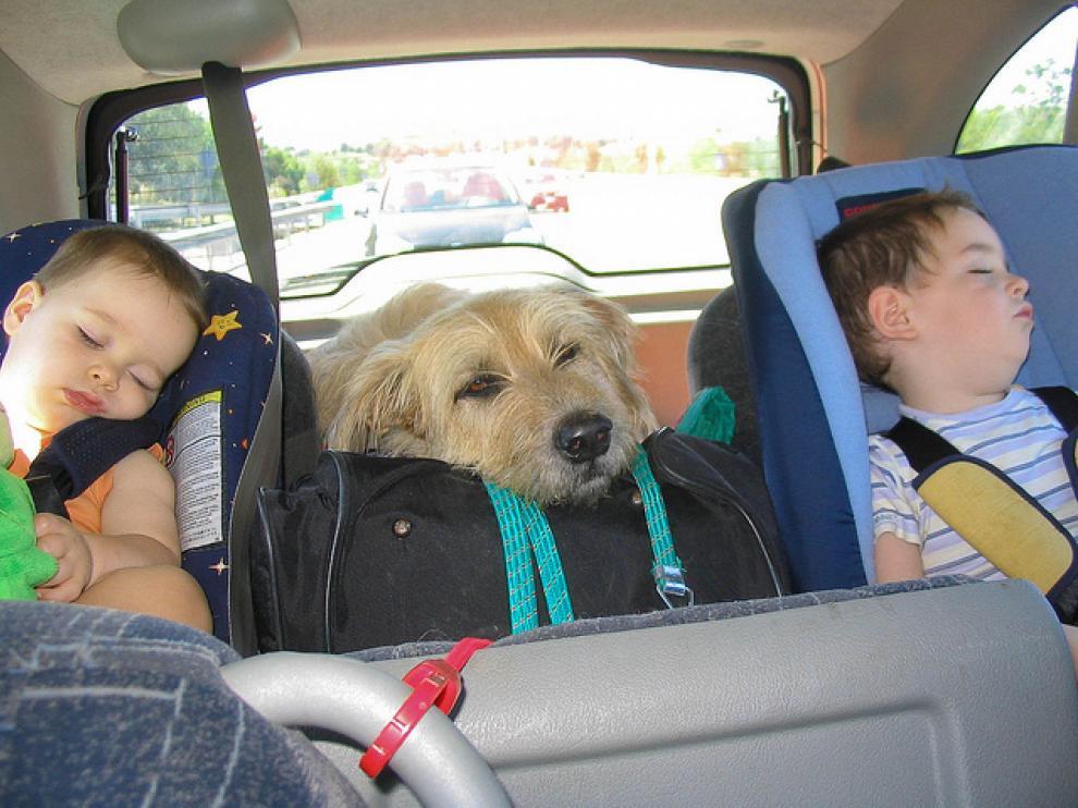 Llevar el coche equipado con parasoles en las ventanillas laterales, por si les ronda el sueño, siempre es buena idea.