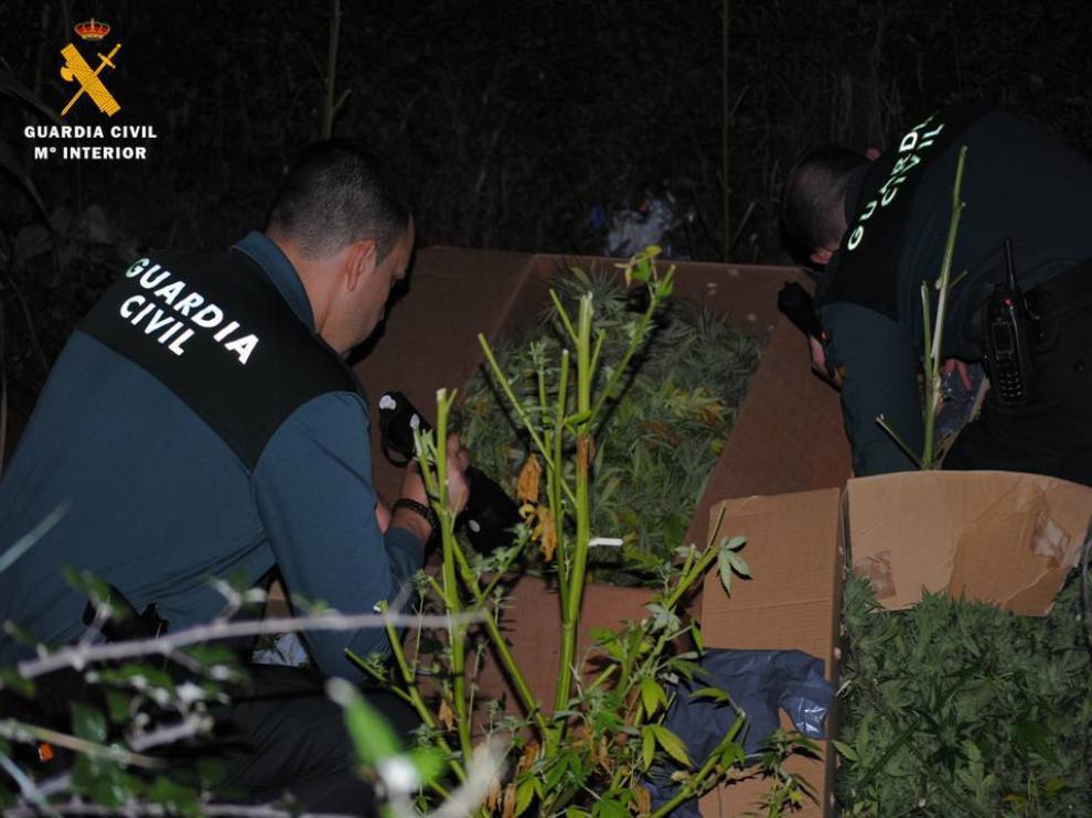 Los agentes de la Guardia Civil, durante la apertura de las cajas que contenían marihuana.