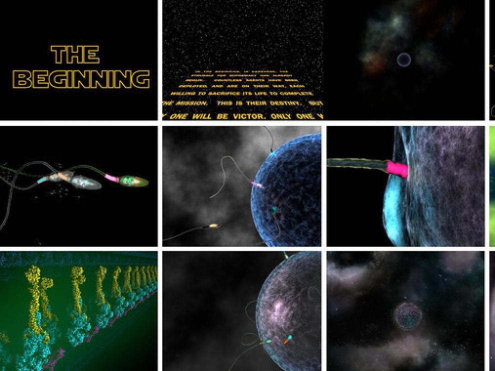 Storyboard general del cortometraje The Beginnig