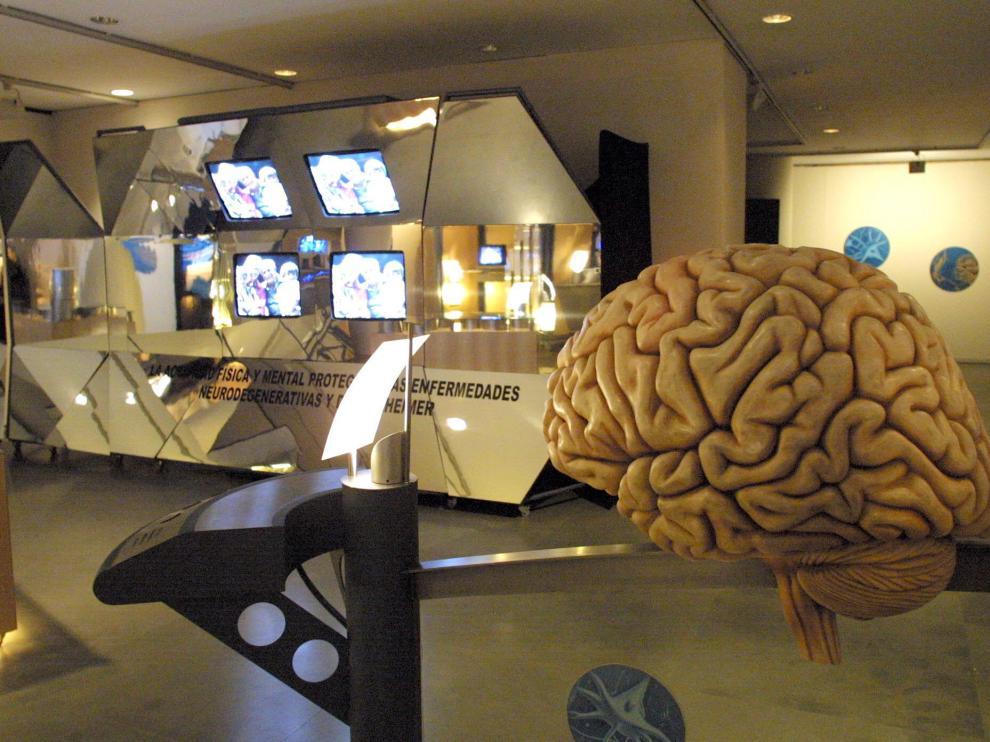 El test de IQ mide el Coeficiente Intelectual