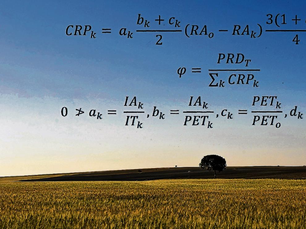Sobre un campo de cereal aragonés puede leerse el algoritmo en el que se basa la propuesta del consejero de Desarrollo Rural para elaborar una nueva PAC.