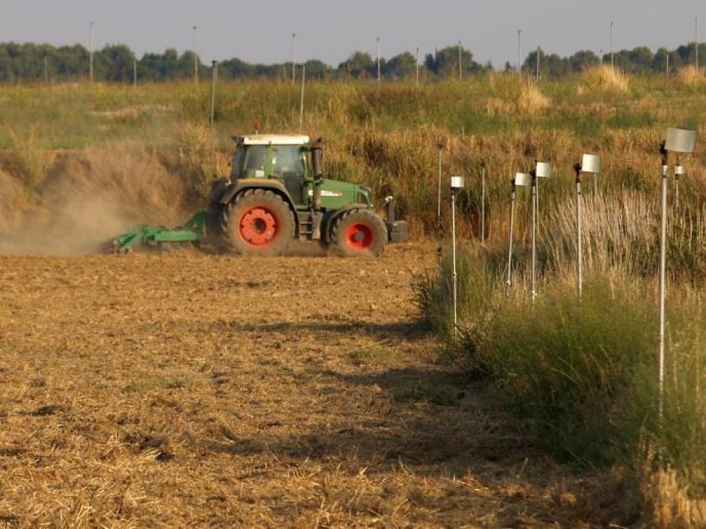 Trabajos de labranza en una explotación de Huesca para preparar la tierra para la siembra de cereal.
