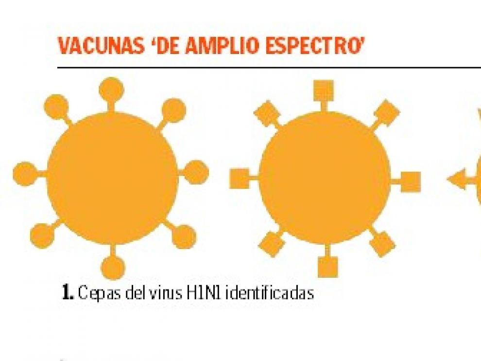 vacuna gripe 3