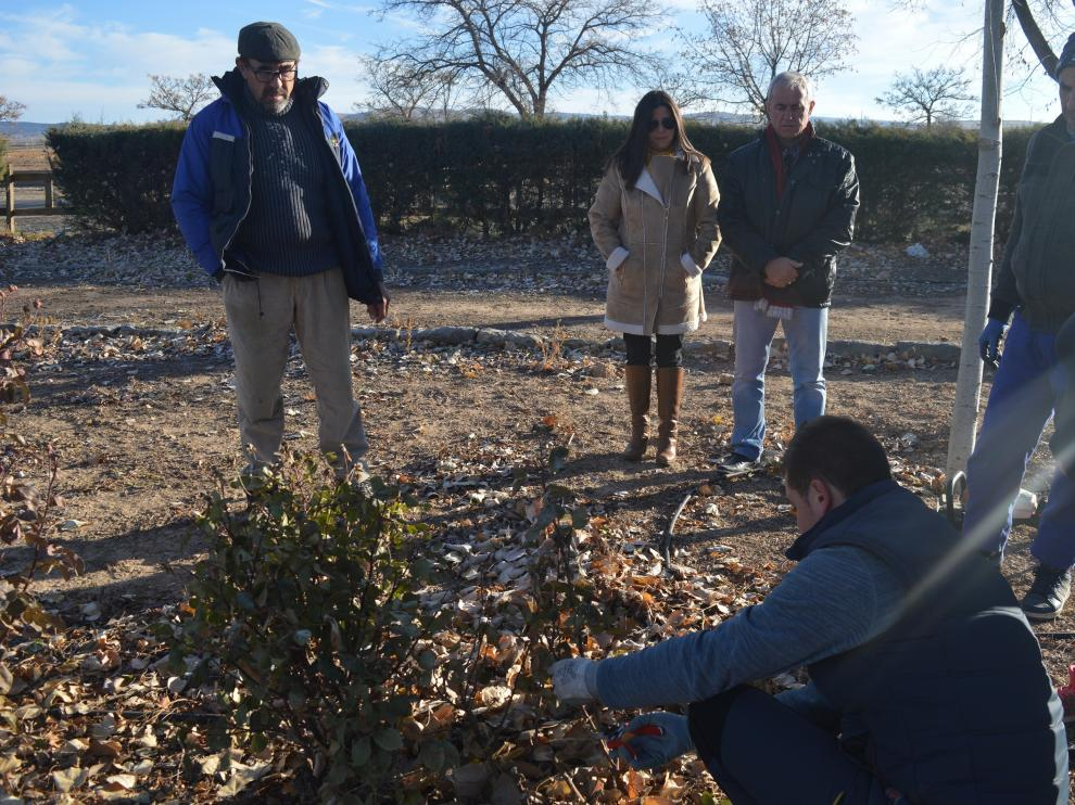 Prácticas de jardinería con operarios en Villarquemado.