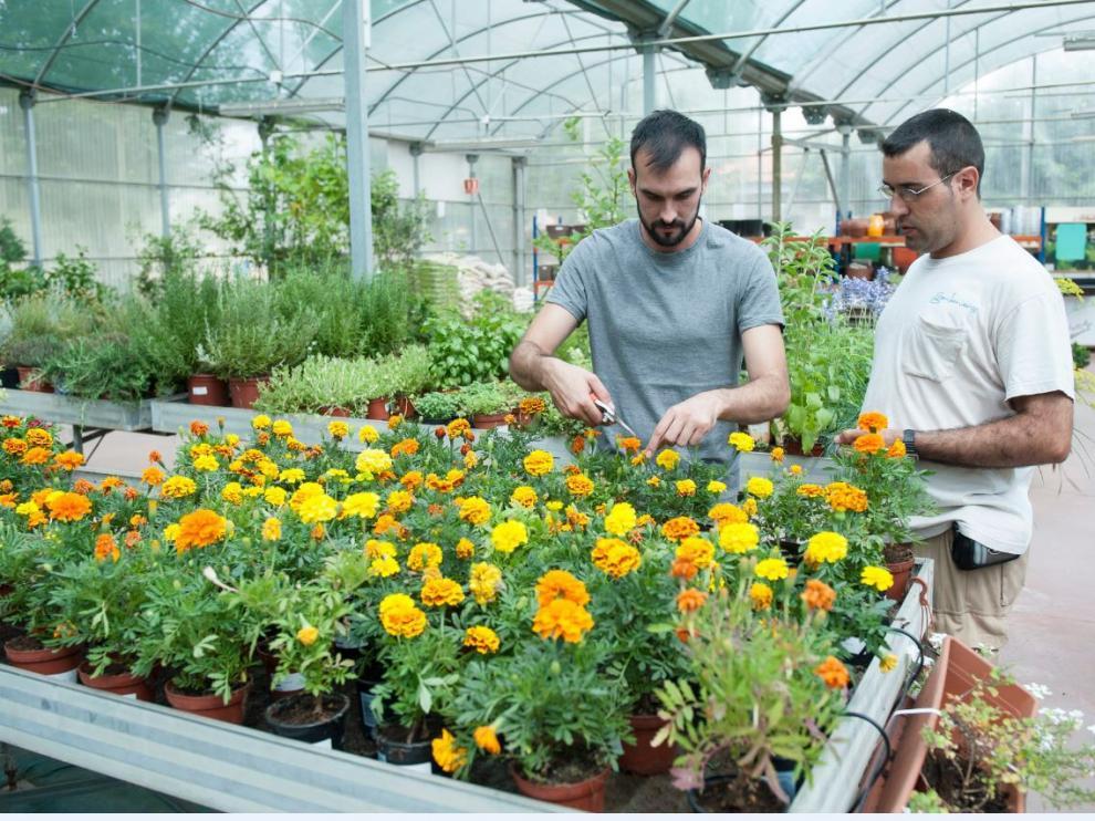 Centro Especial de Empleo Gardeniers, de Atades.
