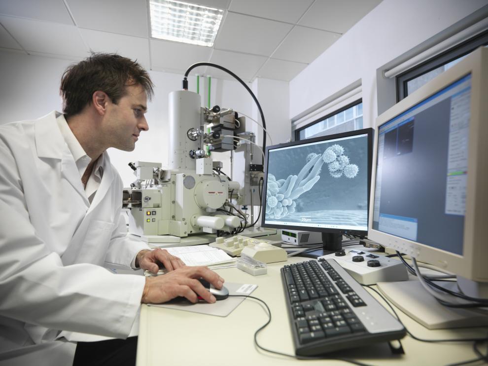 En la investigación han participado científicos de la Universidad de Oviedo.