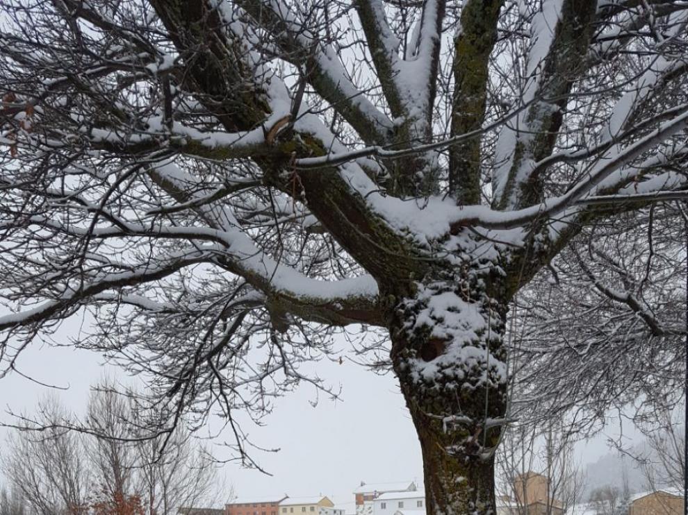 Paisaje cubierto por la nieve en Griegos.