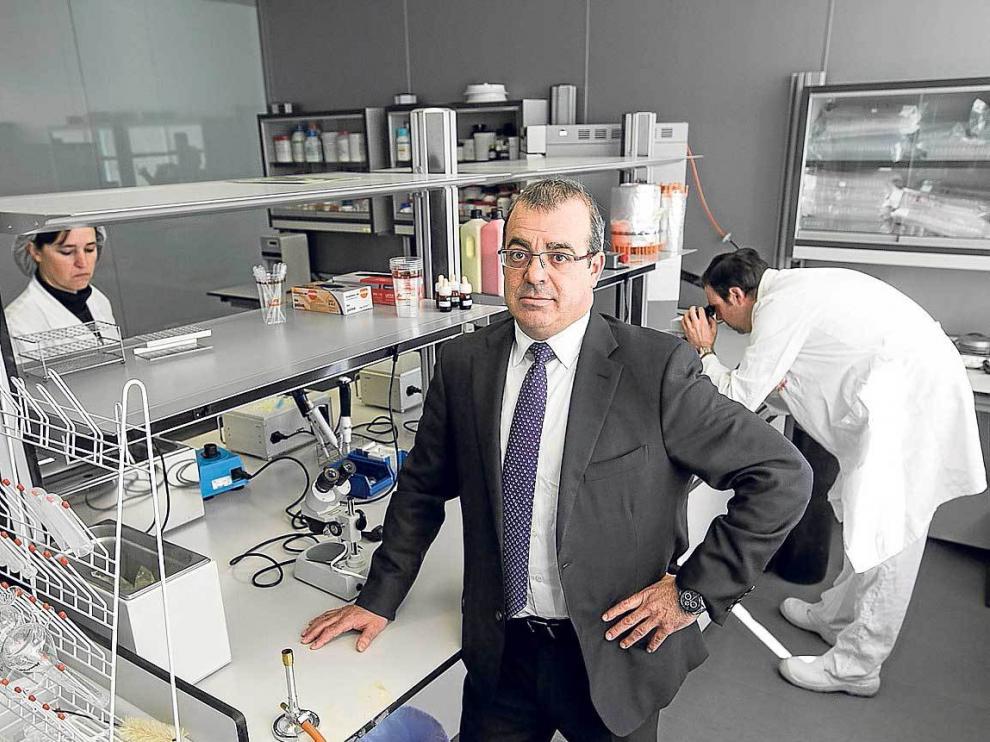Jesús Mena, director general de Magapor, en las instalaciones de la empresa en Ejea.