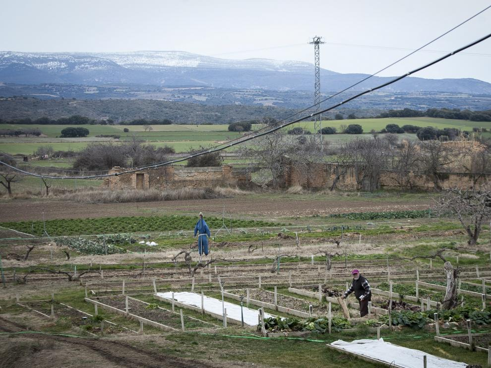 Roberto García revisa el huerto del monasterio. Al fondo, la sierra de Guara.