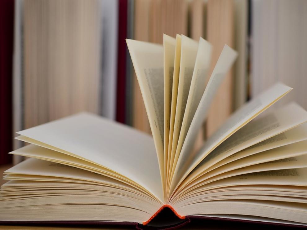 Clubes de lectura de cinco localidades participan en un encuentro en Pedrola