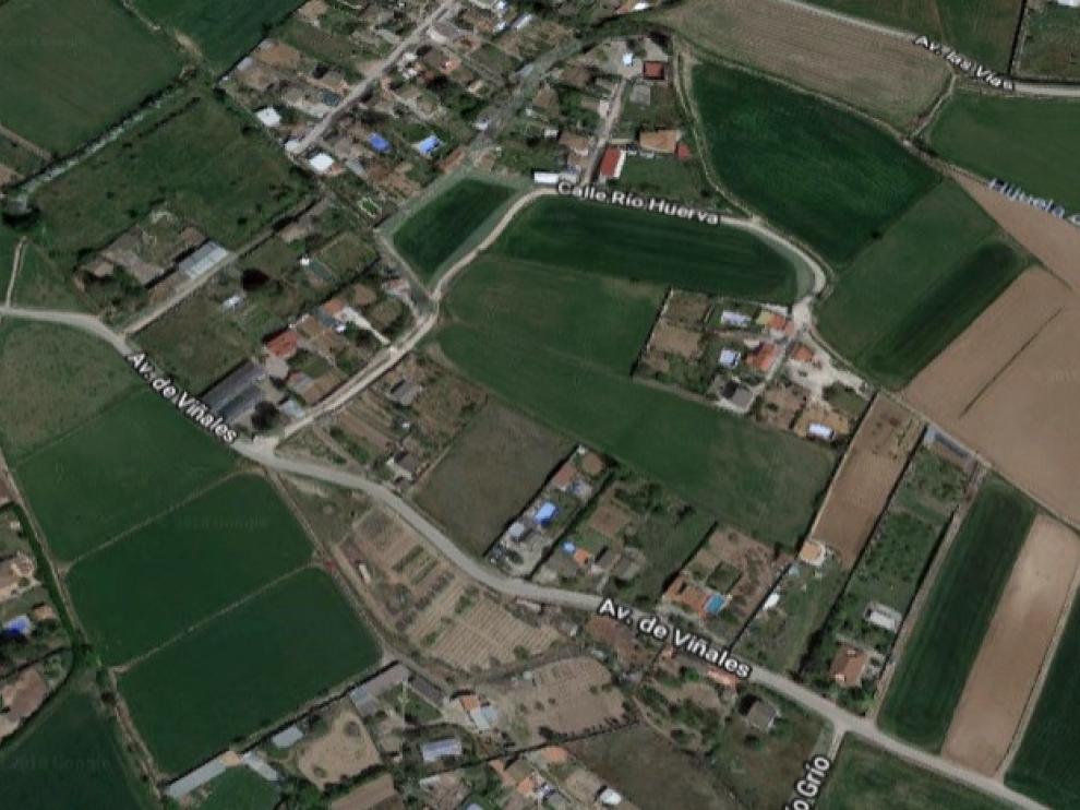 Camino Viñales en Pinseque