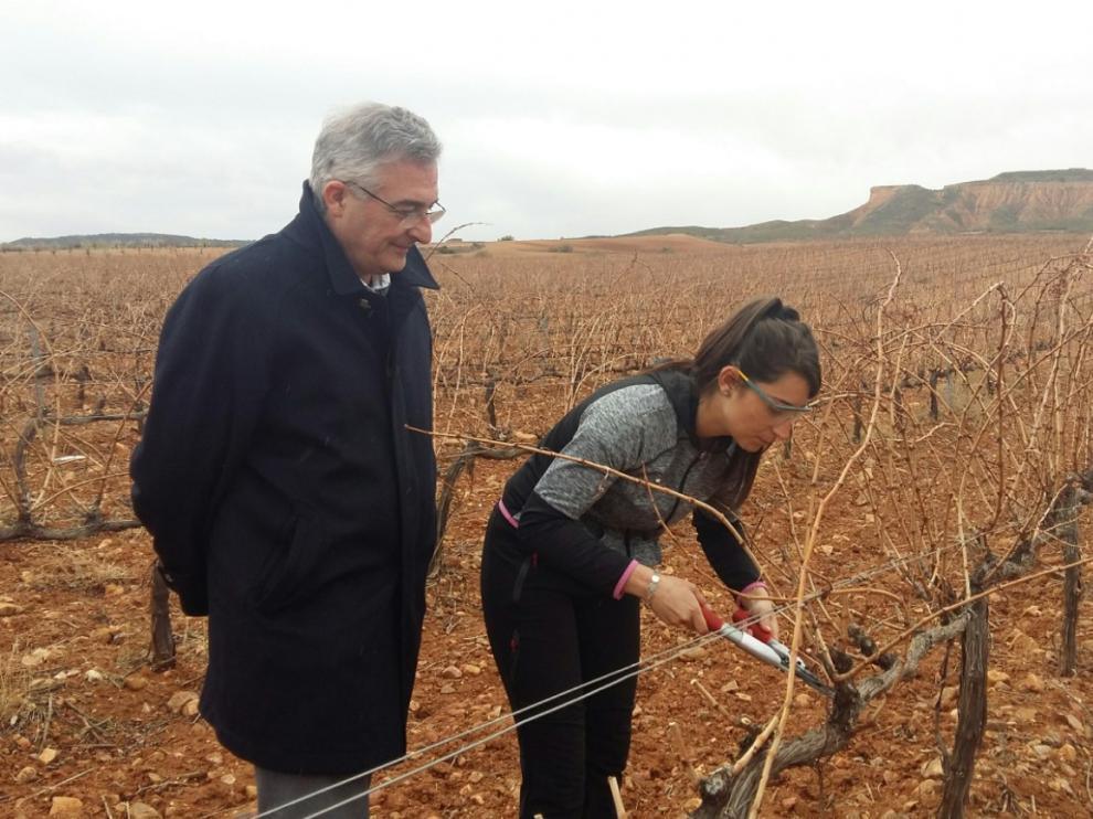Olona visita la explotación de joven agricultora en Villanueva de Huerva