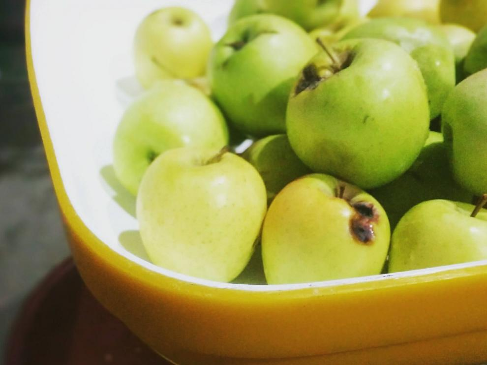 Algunas de las manzanas cultivadas por Arto, antes de convertirse en sidra.