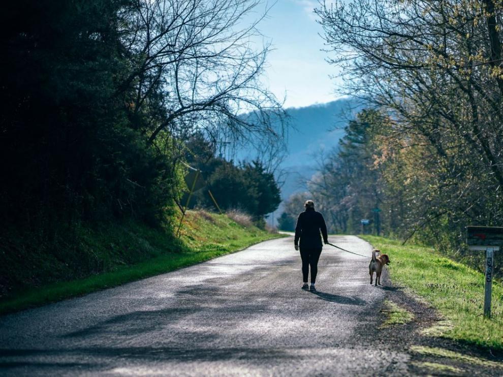 El Alto Gállego propone diez rutas para practicar senderismo con nuestra mascota.