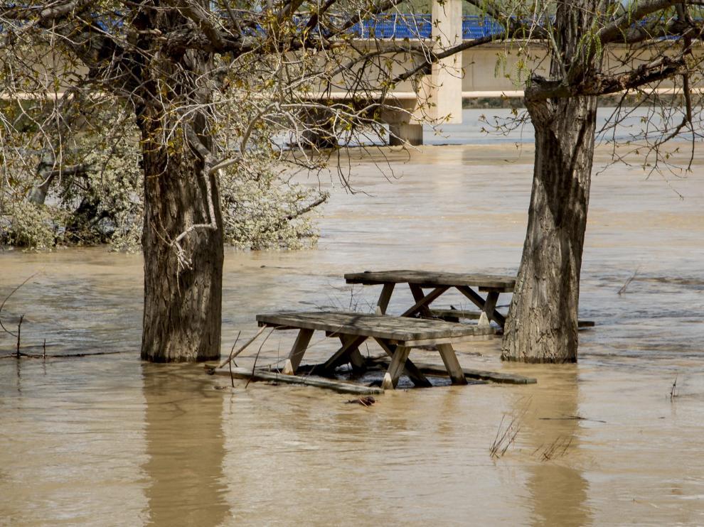 El entorno del Camino Natural del Ebro amaneció ayer inundado en Novillas.