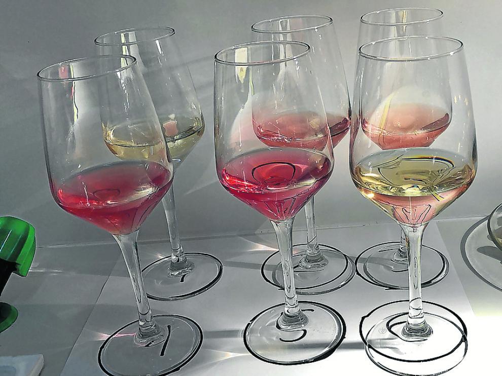 Muestra de algunos de los vinos elaborados con las variedades recuperadas.