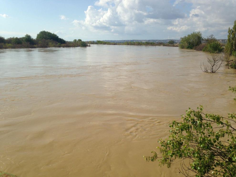 El Ebro a su paso por Pina ha anegado cientos de hectáreas