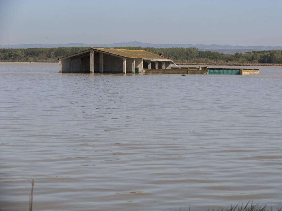 Una explotación ganadera de Quinto, este martes, todavía anegada por el agua.