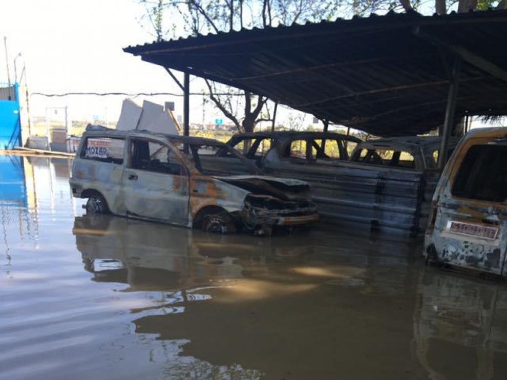 El Centro Canino Aragonés, anegado por el Ebro un mes después de sufrir un incendio