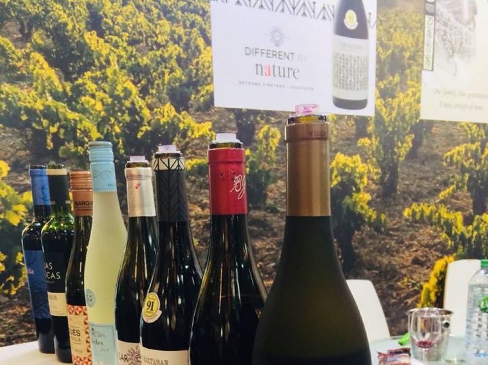 Algunos de los vinos que salen de Bodegas San Alejandro.