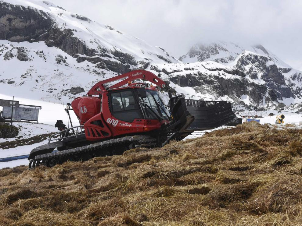 Las máquinas pisapistas compactaban este lunes en Candanchú la paja que cubre la nieve una vez apilada.