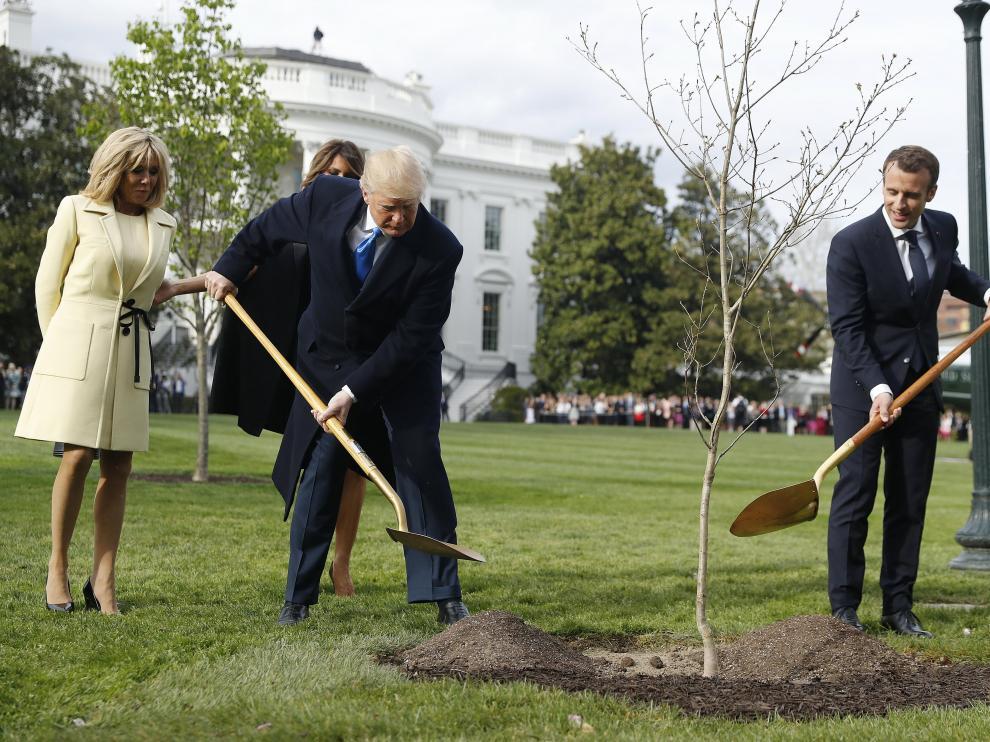 Trump y Macron plantando el árbol con el que el mandatario francés le obsequió en su visita de Estado.