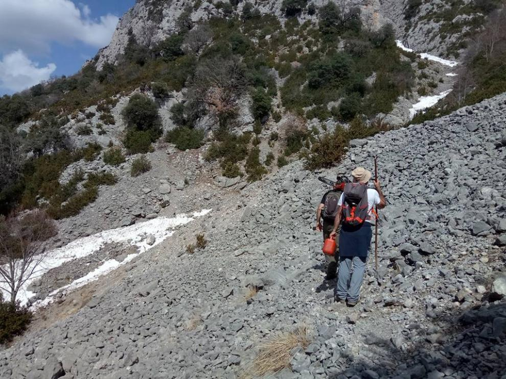 Varios voluntarios durante la limpieza de uno de los caminos impulsados por la donación de Tronzadora, el que va de La Cuenga a Sanzuelo, en Saravillo (Huesca).
