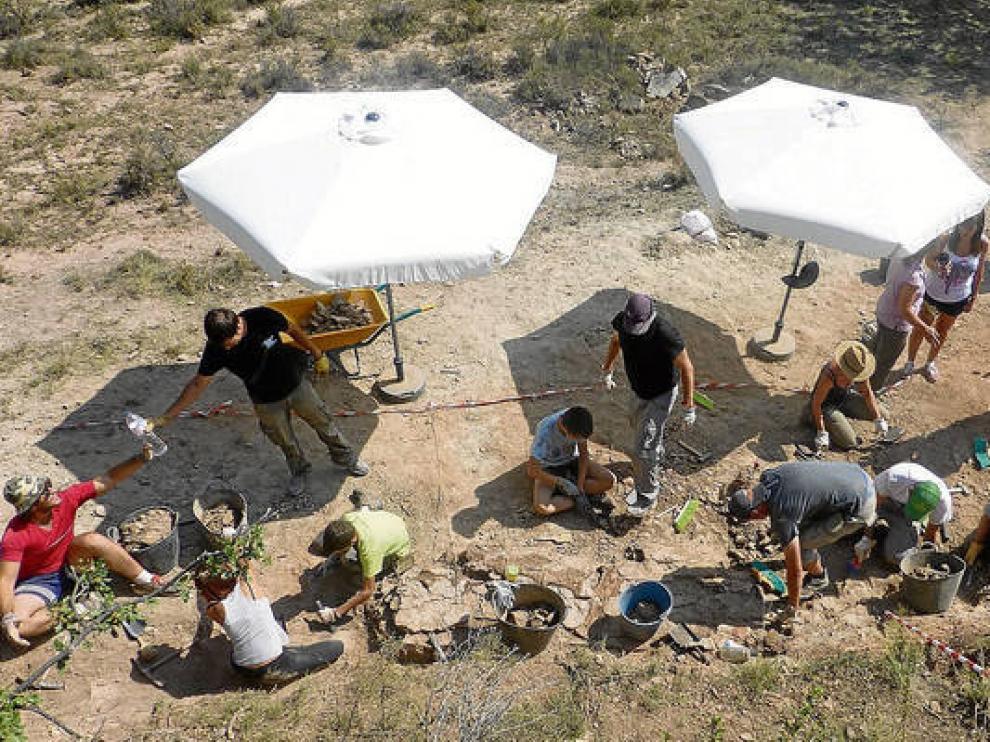 Excavaciones realizadas en yacimientos de El Castellar.