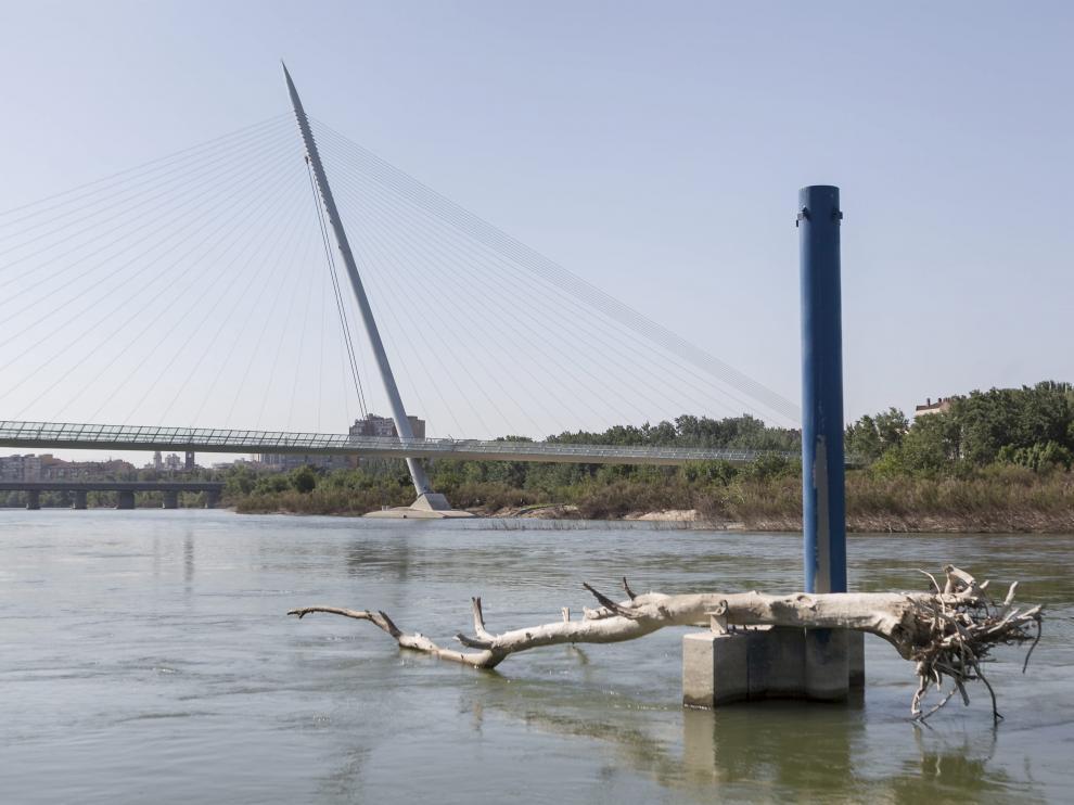Los grandes troncos que arrastró el río siguen todavía en el entorno de la Expo