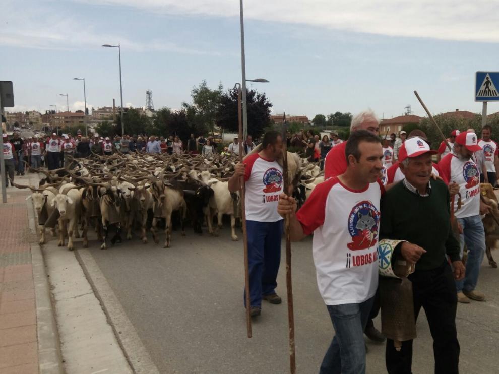 """Medio centenar de manifestantes """"por la defensa de la ganadería extensiva"""" frente al lobo"""