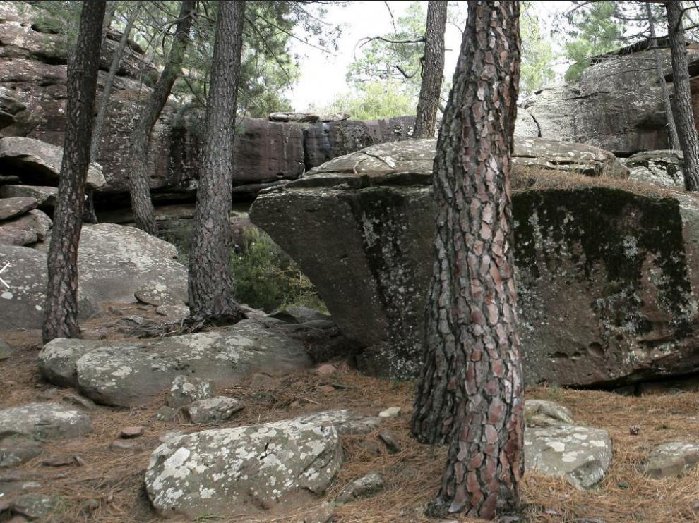 Paisaje Protegido de los Pinares de Rodeno, en Albarracin.