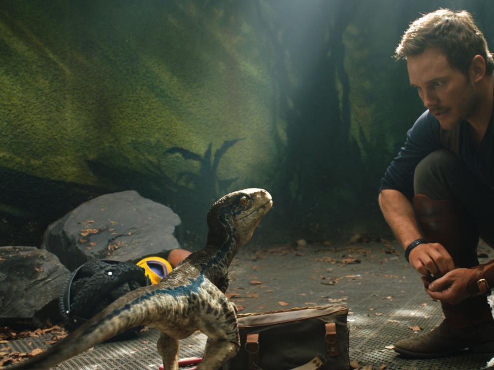 Owen Grady, interpretado por Chris Pratt, con Blue, la 'velocirraptor'.