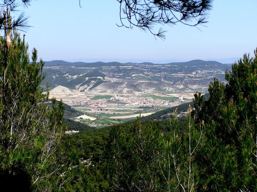 Castejón de Valdejasa está rodeado de un bosque que renace de las cenizas tras el grave incendio sufrido en 2008