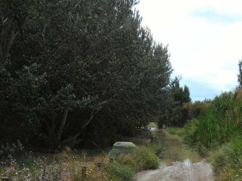 Uno de los caminos cortados cercanos al río Gállego