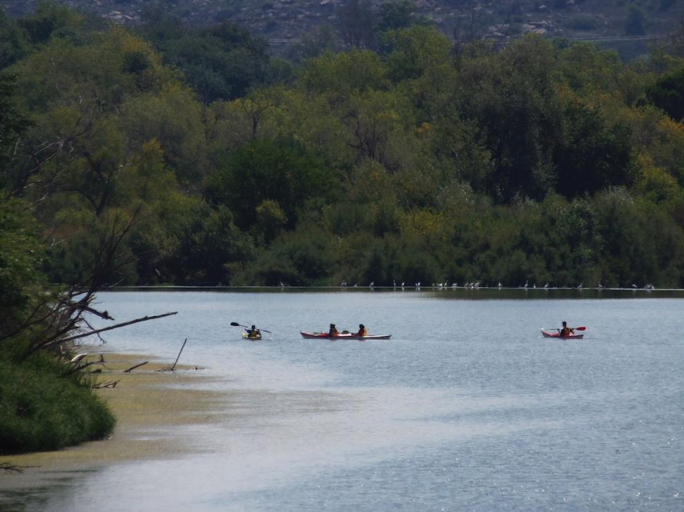 Piraguas navegando por el Ebro en Escatrón; al fondo, gacetas en el agua.